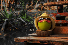 Coconut with straw hat and bright sunglasses stand on the bench in dark tone Royalty Free Stock Image
