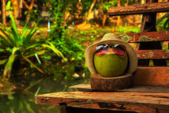 Coconut with straw hat and bright sunglasses stand on the bench Royalty Free Stock Photography