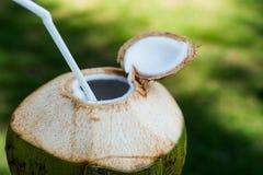 Coconut with straw Stock Photo