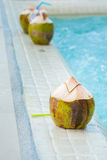 Coconut with straws to drink Royalty Free Stock Photo