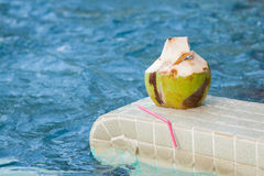Coconut with straws to drink Stock Photo