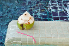 Coconut with straws to drink Royalty Free Stock Photography