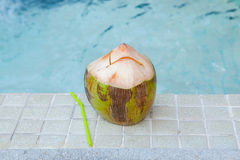 Coconut with straws to drink Stock Photos
