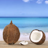 Coconut in summer on the beach and sea Royalty Free Stock Photo