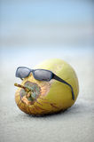 Coconut with sun glasses. The coconut wearing a sun glasses just like a human head stock images