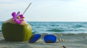 Coconut and a sunglasses royalty free stock photos