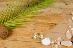 Coconut sunscreen Royalty Free Stock Photo