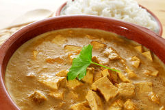 Coconut and tofu curry Stock Images