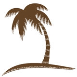 Coconut tree Stock Image