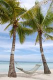 Coconut tree on beach side with cradle royalty free stock photography