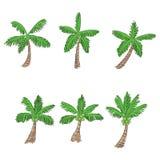 Coconut tree cartoon style, vector Royalty Free Stock Photos