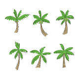 Coconut tree cartoon style, vector Royalty Free Stock Photo
