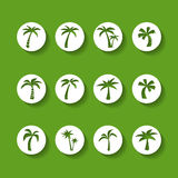 Coconut tree circle icon set, sticker version, vector eps10 Royalty Free Stock Photo