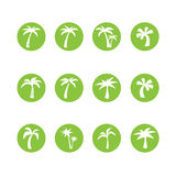 Coconut tree circle icon set, vector eps10 Stock Photos