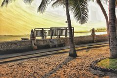 Coconut tree. Clean beaches in sunset light Stock Photos