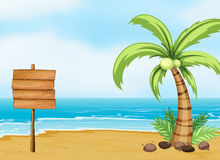 A coconut tree and an empty board at the beach Royalty Free Stock Photo