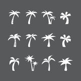 Coconut tree icon set, vector eps10 Royalty Free Stock Photo
