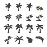 Coconut tree icon Stock Photos