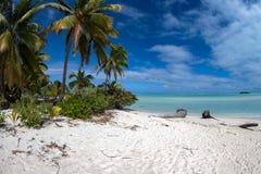 Coconut tree on Polynesia beach Wonderful lagoon Royalty Free Stock Photography
