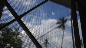 Coconut tree with sky and cloud timelapse, selective focus at  window screen.  stock video footage