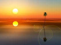 Coconut tree sunset sea Royalty Free Stock Images