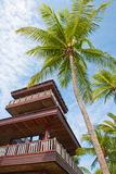 Coconut tree with watch tower Royalty Free Stock Images