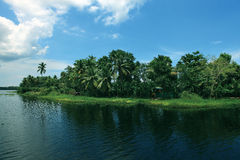 Coconut trees and backwaters of Kerala, India. Stock Image