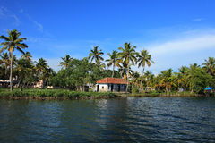 Coconut trees and backwaters of Kerala, India Stock Image
