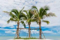 Coconut trees at beauty beach Stock Photo