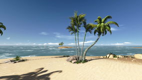 Coconut trees on a deserted island footage