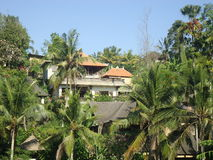 Coconut Trees Hide The Villa. Luxury villa on Bali which perfect for tranquility seekers Royalty Free Stock Photo
