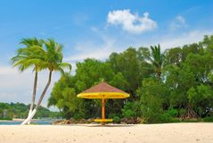 Coconut trees and hut Royalty Free Stock Image