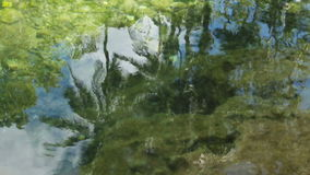 Coconut trees reflected in the water. stock footage