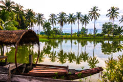 Coconut trees and reflections Stock Photo