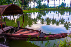 Coconut trees and reflections Stock Image