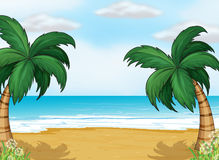 Coconut trees in the seashore Royalty Free Stock Image