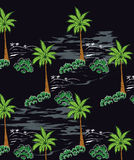 Coconut trees in summer to Paradise Island and a black background. Stock Photos