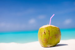 Coconut on a tropical beach. Tropical cocktail in a coconut on a beautiful beach Stock Images