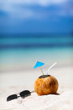 Coconut on a tropical beach Stock Photography