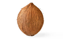 Coconut - Tropical Fruit Royalty Free Stock Photography