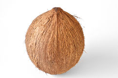 Coconut - Tropical Fruit Royalty Free Stock Images