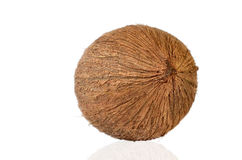 Coconut - Tropical Fruit Royalty Free Stock Photo