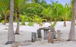 Coconut Tulum palm trees beach table and seats Stock Photography