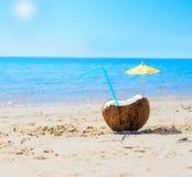 Coconut under the sun Stock Photo