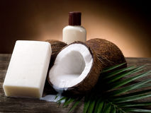 Coconut walnut soap Royalty Free Stock Photos