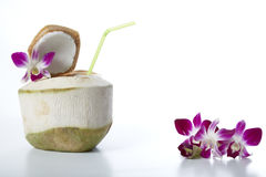 Coconut Water Drink. Fresh Coconut Water Drink on white background Royalty Free Stock Photo