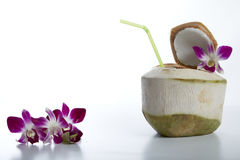 Coconut Water Drink. Fresh Coconut Water Drink on white background Stock Image