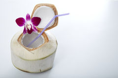 Coconut Water Drink. Fresh Coconut Water Drink on white background Royalty Free Stock Photos