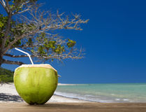 Coconut water drink is put on the table by the beach. Royalty Free Stock Photos