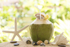 Coconut Water. Stock Photos